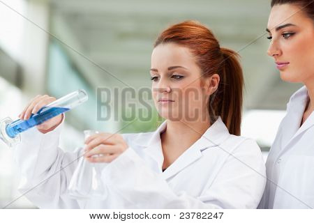 Scientists pouring liquid in an Erlenmeyer flask in a laboratory