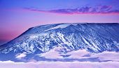 foto of kilimanjaro  - Kilimanjaro at sunset giant volcano mount mountain covered with snow beautiful landscape Amboseli national park Kenya Africa - JPG