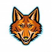 Mascot Icon Illustration Of Head Of A Coyote Or Canis Latrans, A Canine Native To North America View poster
