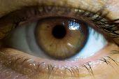 Macro Image Of Human Eye With Contact Lens poster
