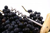 stock photo of gleaning  - Bunch of black juicy grapes over white - JPG