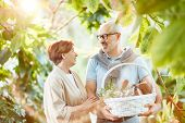 Affectionate senior couple having talk while going for picnic with basket full of provision poster
