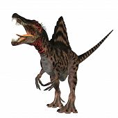 stock photo of behemoth  - The Spinosaurus dinosaur was a huge carnivore of the Cretaceous Period of Earths history - JPG