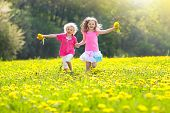 Kids Play. Child In Dandelion Field. Summer Flower poster