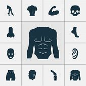 Physique Icons Set With Foot, Joint, Belly And Other Body Elements. Isolated  Illustration Physique  poster