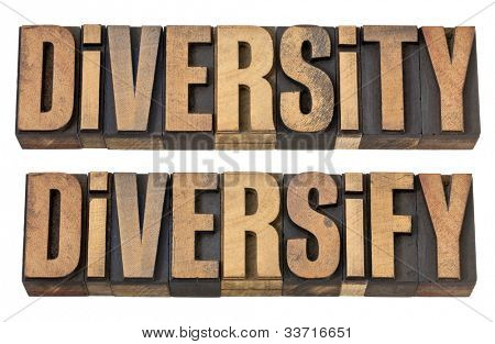 diversity and diversify  - isolated words in vintage letterpress wood type