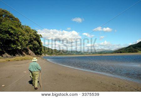 A Walk Along The Mawddach Estuary Near Dolgellau In Gwynedd