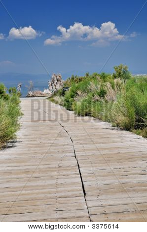 Boardwalk To Mono Lake