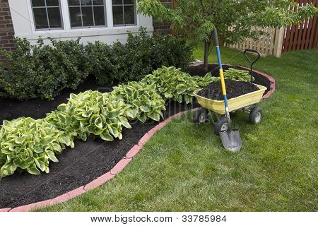 Mulching Around The Bushes