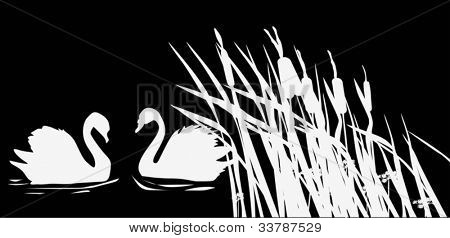 illustration with two swan silhouettes on black background