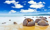 pic of natural phenomena  - Moeraki Boulders panorama - JPG