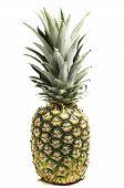Fresh Pineapple On White Background Fresh Pineapple On White Background poster