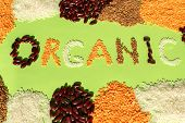 Frame Of Different Grains With Organic Word On Green Background. Organic Word Made Of Various Grain. poster