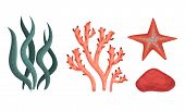 Collection Of Corals And Seaweeds, Underwater Flora And Deep Sea Creatures Vector Illustration poster