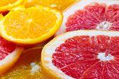 stock photo of tangelo  - Sliced citrus fruits - JPG