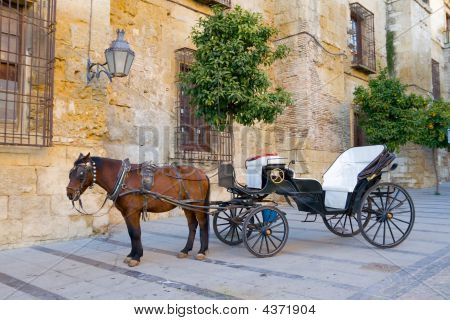 Traditional Horse And Cart