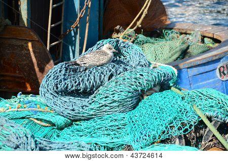Fishing nets and equipment