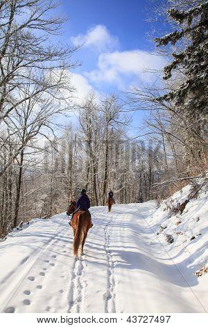 Winter On Horseback