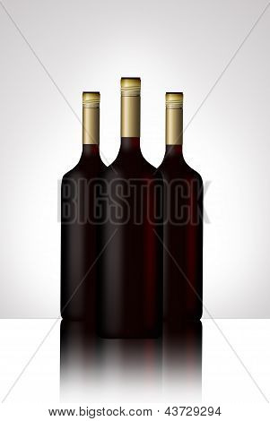 Wine Bottles Illustrated
