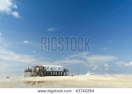 Recife de Tubbataha mar de Sulu Filipinas