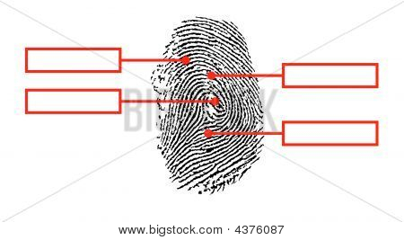 Fingerprintred