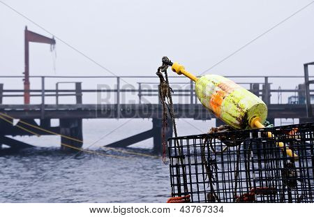 Lobster buoy and traps