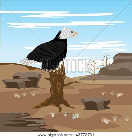 Lifeless Desert And Eagle On Tree