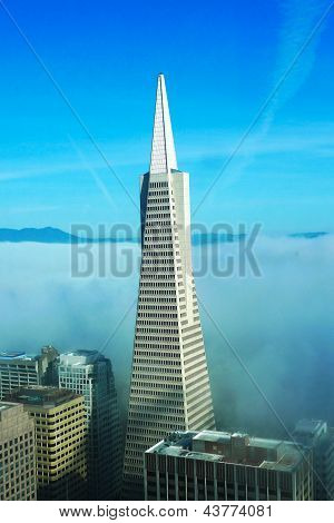 :Areal view on Transamerica pyramid and city of San Francisco covered by dense fog