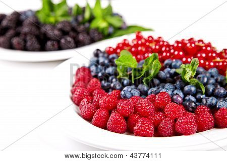Blueberry, Rasberry, Cranberry And Mulberry