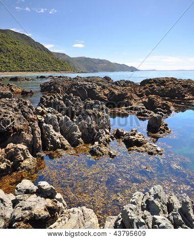 Kaikoura Rock Pool Vertical Panorama, New Zealand