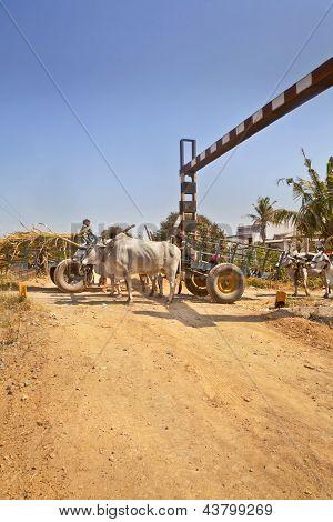 Bullock Cart Congestion Railway Junctions Hinterlands India