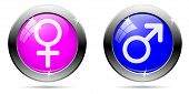 Gender Buttons Set