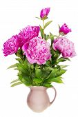 foto of six-petaled  - Minimalistic mourning mournful bouquet isolated  - JPG