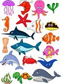 stock photo of manta ray  - Vector illustration of sea life cartoon set - JPG