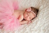 image of headband  - Newborn baby girl wearing a pink crocheted headband and tutu - JPG