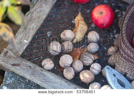 Walnuts, Nutcracker And Leafs