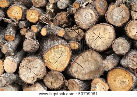 Pile Of Firewood Background Texture