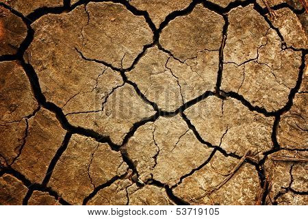 Dry, cracked earth. texture