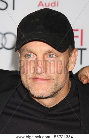 LOS ANGELES - NOV 9:  Woody Harrelson at the AFI FEST 2013 Presented By Audi -