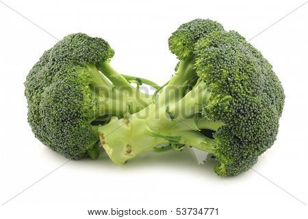 Fresh broccoli florets on a white background