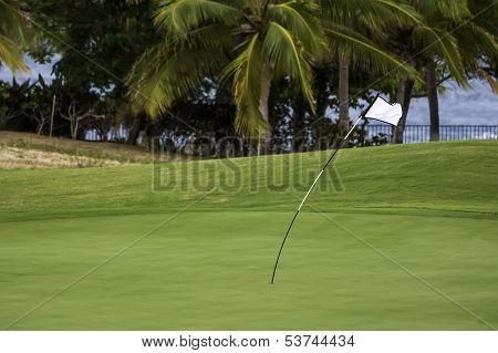 Windy Golf