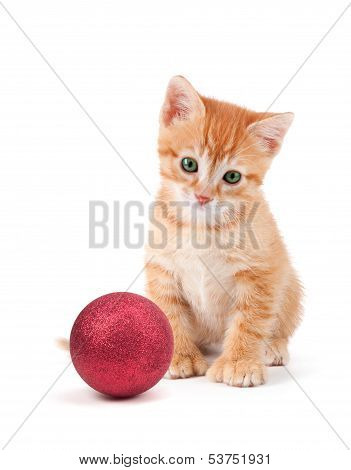 Cute Orange Kitten With Large Paws Sitting Next To A Christmas Ornament On A White Background.