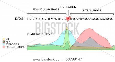 hormone level