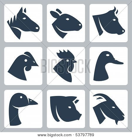 Vector Domesticated Animals Icons Set: Horse, Sheep, Cow, Chicken, Rooster, Duck, Goose, Pig, Goat