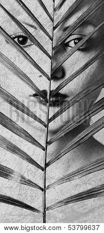 Women Portrait With Palm Leaf