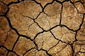 stock photo of arid  - Dry - JPG