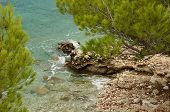 Rocky Shore Of The Adriatic Sea