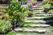 picture of tree lined street  - Old stone steps in a cozy little boutique hotel - JPG