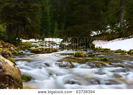 flowing water over stones of river through rural nature landscape