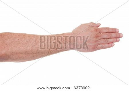 Close-up Of Back of Human Hand